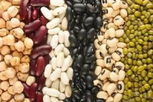 beans big