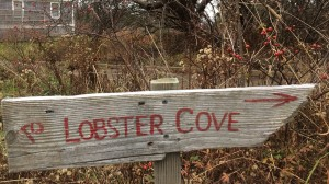 lobster cove sign